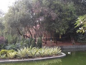 Парк Лодхи Гарден